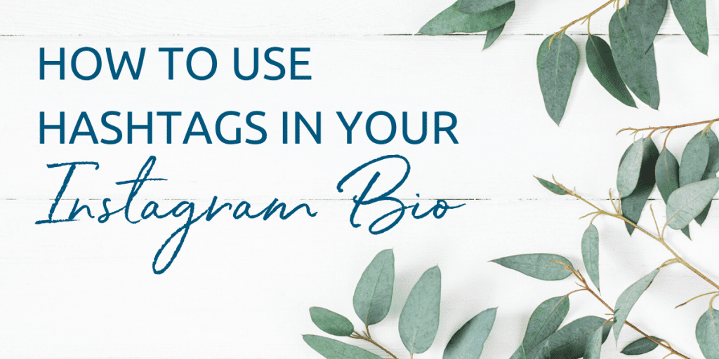 How to use hashtags in your Instagram bio